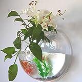 GaoAo Wand-Aquarium Aquarium dekorative Wand hängen Töpfe Haus Dekoration, Haus Gartenarbeit,...