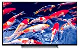 Toshiba 49U6763DA 124 cm (49 Zoll) Fernseher (4K Ultra HD, Triple Tuner, Smart TV)