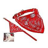 WayGo Halsband mit Halstuch für Hunde und Katzen, verstellbar, klein