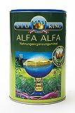 BioKing 400g ALFA ALFA, Pulver zur Nahrungsergänzung aus kontrolliert ökologischem Anbau