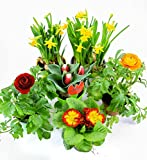 Frühlingsblumen Set 11, Narzissen, Tulpen, Primeln & Ranunkeln