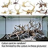 Aquarium-Dekoration, Baumstamm, Treibholz, zufällige Farbe