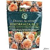 Mykorrhiza Pilze von David Austin - organisch, wiederverschließbar, Biostimulanzien, Rosendünger -...