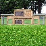 Zooprimus Kaninchenstall 2 XXL Hasenkäfig - DR. HASE - Stall für Außenbereich (für Kleintiere:...