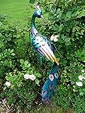 Dekofigur Pfau Metall, ca. 90 cm hoch Gartenfigur Tierfigur Metallfigur