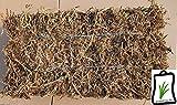 Erbsenstroh Einstreu Taubenschlag Nestbau Vögel Kanninchen