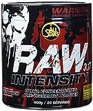 All Stars Raw Intensity 3.17, Fruit Punch, 1er Pack (1 x 400 g)