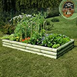 Gemüsebeet Hochbeet aus Holz Beetumrandung 240 x 120 cm von Gartenpirat®