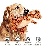 ubest Hundespielzeug aus Plüsch, Dinosaurier Plüsch-Stoffspielzeug, Monster Quietschspielzeug für...