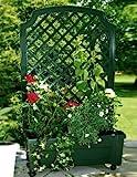 KHW 37303 Pflanzkasten auf Rollen mit Bewässerungssystem und Spalier, grün