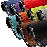 Schmutzfangmatte ColorLine   Türmatte in vielen Größen   Fußmatte für Innenbereich  ...
