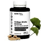 Ginkgo Biloba 6000 mg. 210 vegane Kapseln für 7 Monate. 100% natürlich mit 24% Flavonoiden und 6%...