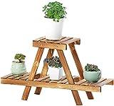 YWYW Holz Pflanzenständer Zweischicht Indoor Holz Pflanzenständer Blumentopf Display Ständer für...