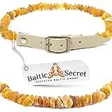 Bernsteinkette Hund, Bernsteinhalsband für Hunde & Katzen, mit 100% Lederband, aus rohem baltischem...