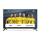 CHiQ L40G4500 100cm Fernseher 40 Zoll TV FHD LED Fernseher, Triple Tuner, HDMI, USB, CI+, H.265,...