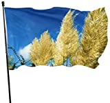 Viplili Ziergras dekorativ getrocknet natrlich wild groe dekorative Flaggen Yard Flag Stand 3x5 Fu...