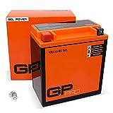 GP-PRO GTX16-BS 12V 14Ah GEL-Batterie (Kompatibel mit YTX16-BS / 81600) (Wartungsfrei & Versiegelt)...
