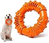 Hunde Spielzeug für Starke Kauer, Kautschuk Hundespielzeug, Kauspielzeug Hund unzerstörbar,...