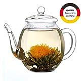 Creano Teekanne aus Glas mit Deckel für 500ml Tee aus Teeblumen, Teerosen und losem Tee sowie...