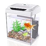 DADYPET Aquarium, Mini-Aquarium, Aquarium-Set, Fischzucht-Set für Medaka und Tropische Fische,...