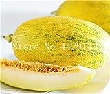 SVI frisch 50 PC Cantaloupe Fruchtsamen für die PflanzenGelb 1