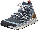 adidas Herren Terrex Free Hiker Blue Walking-Schuh, LEGBLU/DGSOGR/ASHGRE, 42 EU