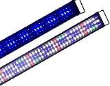 Boomersun Klassik vollspektrum LED5730 Aquarium Beleuchtung Lampe mit Mondlicht Tageslichtsimulation...