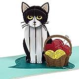 PaperCrush® Pop-Up Karte Katze [NEU!] - Lustige 3D Geburtstagskarte mit Katzenmotiv für Frauen und...