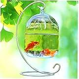 Hotaden Kreative Aquarium Glasvase Fischglas Hängen Vase Aquarium Dekoration Regal