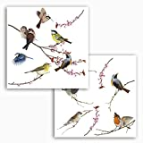Komar - Window-Sticker BIRDS - 31 x 31 cm - Fensterdeko, Fenstersticker, Fensterfolie, Vogel,...