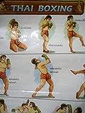 Thai-Kickbox-Poster zum Kampf Grappling Muay Traditioning Thai Kickboxen, Trainingsposter,...