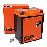 GP-PRO GB14L-A2 12V 14Ah GEL-Batterie (Ähnlich YB14L-A2 / 51411) (Wartungsfrei & Versiegelt)...