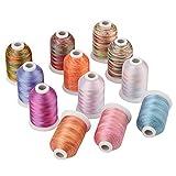 Simthread Multi-Farben Polyester Maschinen Stickgarn - 1,000 Meters, für Brother, Babylock,...
