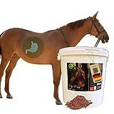 EMMA Mash Pferd I Omega 3 Ergänzung haferfrei I Mash Pferdefutter + Leinsamen geschrotet I alte...