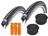 Schwalbe Reifen 40-622 Marathon Plus Set: 2x Fahrradreifen für Trekking- und Crossbikes, inkl. 2x...