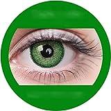 Marine grün : Farbige Jahres Kontaktlinsen ohne Stärke mit Aufbewahrungsbox grau weich, als 2er...