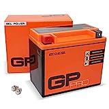 GP-PRO GTX12-BS 12V 10Ah GEL-Batterie (Kompatibel mit YTX12-BS / 51012) (Wartungsfrei & Versiegelt)...
