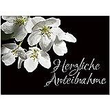 4 x Beileidskarte mit Umschlag/Motiv Herzliche Anteilnahme/Beerdigung, Trauer, Sterbefall,...
