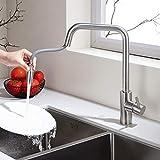Homelody Mischbatterie Armatur Ausziehbar Wasserhahn mit Edelstahl Brausekopf Küchenarmatur 360°...