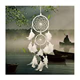 Dsaren Traumfänger Handgefertigt, Feder Dreamcatcher Wandbehang Ornament für Baby Shower Car...