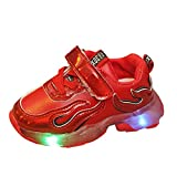 SINGOing Unisex-Kinder Sneakers LED Schuhe Sportschuhe Ultraleicht Atmungsaktiv Turnschuhe...