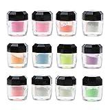 zhiwenCZW 12 Farben Luminous Resin Pigment Kit Im Dunkeln leuchten Pulverpigment Farbstoff Nail Art...