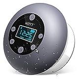 Bluetooth Lautsprecher Dusche, HOTT IPX4 Wasserdicht Tragbares Bluetooth 5.0 Boxen Musikbox, TWS...