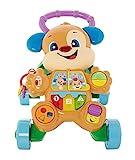 Fisher-Price FRC83 - Lernspaß Hündchens Lauflernwagen und Baby Lauflernhilfe mit mitwachsenden...