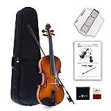 Aileen Violine Voller Größe 4/4 Ausstattung Massivholz, Schüler Erwachsene Anfänger Violinenset...