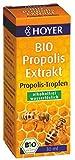 Hoyer Bio Propolis Extrakt, alkoholfrei BIO (1 x 30 ml)