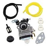 AISEN Vergaser mit Benzinfilter kit Tuyau für Einhell BHS 26 / BPH 2652/1 / BG-PH 2652 Heckenschere