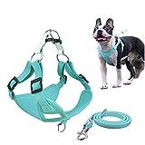 Step-in Air Hundegeschirr Reflektierende Hundeweste Geschirr mit Leine Atmungsaktiv und Verstellbar...