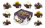 Creano Teeblumen Variation im exklusiven Tassenformat Erblühteelini als Probierset - 8 Teeblüten...