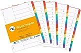 perfect line 5er Pack 12-teiliges DIN-A4 Register farbig (5x12), 22,3 x 29,7 cm, mit Deckblatt,...
